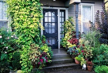 Outside the Home / Ahhhh! Create Your Own Secret Garden. / by Martha Perfetto