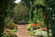 dream home: garden  / by Nikki Boyd