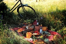 Bicycle Picnics / Take your bicycle on a picnic in Amsterdam or beyond!
