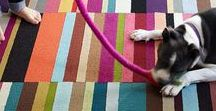 Designing: Pet Friendly Home | FLOR / Pets are part of the family, so why not be inspired and design with them in mind.