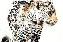 Animal Skins_Camo_Texture