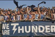 School Spirit / by Trine University