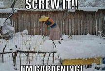 Gardening / by Joyce Tillery
