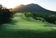 Golf Resorts & Courses