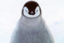 Penguins! / by Meg Weiss