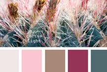 Color Ideas for the Home / by Joyce Tillery