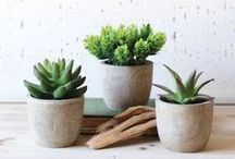 Pretty Products: For the Home