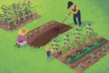 Gardening / by Kimberly Holloway