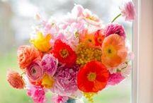 Flowerpower ❤️ / De mooiste bloemen in de mooiste kleuren