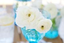 plants & flowers / by Yohan Joanie Maltais