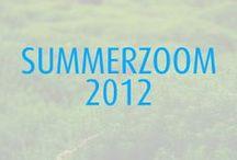 >> SummerZoom 2012
