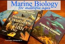 Homeschool Biology Resources / Biology and marine biology resources for us to use for multi age studies from elementary to high school.
