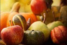 Autumn Eats / Tis the season for everything pumpkin!