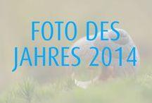 Foto des Jahres 2014 / Im Dezember 2013 suchen wir mit euch auf Facebook das Foto des Jahres!