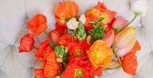 farbwelt orange / Farbinspirationen für Brautpaare zur Hochzeit  zusammengestellt von www.suess-und-salzig.de