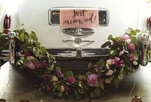 Dream Wedding / Our wedding is going to be up in Estes Park Colorado. Nestled against a beautiful mountain side and a lovely mountain lake. I want to take the rustic scenery an make it into a beautiful elegant garden, shabby chic, rustic wedding.   This dream wedding board is for the Dream Wedding Contest offered by Davids Bridal. If feel so blessed that they are offering this chance to win $10,000 and even more blessed that I am able to participate in it. Thank you David's Bridal!! / by Katie Cramer