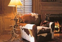 Cozy Cabin Furnishings / by Kim Colborn