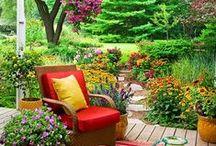 Garden :: place i enjoy