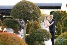 Pepin Hospitality Center Weddings / Weddings we have photographed at the T Pepin Hospitality Center in Tampa Florida