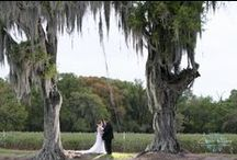 Wishing Well Barn Weddings / Weddings at the Wishing Well Barn that we have photographed / by Carrie Wildes Photography
