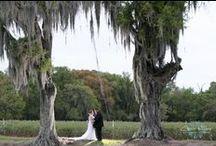 Wishing Well Barn Weddings / Weddings at the Wishing Well Barn that we have photographed
