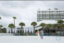 Hilton Clearwater Beach Weddings / Weddings at the beautiful Hilton Clearwater Beach that we have photographed