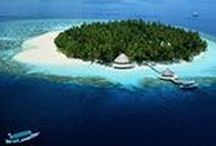 Maldives / The Maldives is a wonderful destination for resting and recovering.