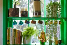 Gardens Indoors and Out  / by Kelly Dwyer