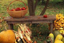 Pictures Autumn
