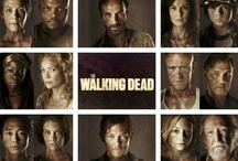 THE WALKING DEAD / BEST DAMN TV SHOW IN THE WORLD!!! / by Jaimie Addesso