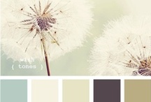 Colour Schemes / by Mariah DeYoung