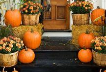 Everything fall  / by Lisa Charters Jordan