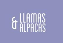 llamas & alpacas / by Polygraw