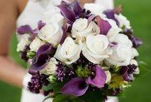 Wedding / by Laura