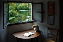 Finestre / Windows / by A. Cucchiero