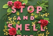 """Stop and Smell the """"Roses"""" / Life is short. Take time to take in the fragrant world around you, and explore the world of fragrance through the Demeter Fragrance Library at MiniaturePerfumeShoppe.com"""