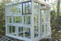 Garden - Greenhouse / Greenhouse, Conservatory, Solarium, Cold Frame, Potting Shed, Root Cellar, Garden Shed / by Jessica OKC