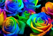Crafts: Beautiful Bouquets / Crochet, felt, paper, etc. flower crafts / by dorothy Hemmingway