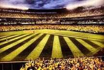 What a Shot / Great photos of Mariners Baseball.