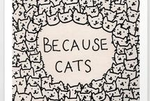 Cats / by Varenna Bennett