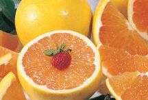 Grove-Fresh Grapefruit / Hale's Florida Indian River Grapefruit-- grove-fresh grapefruits, hand selected in the finest growing region in the world!