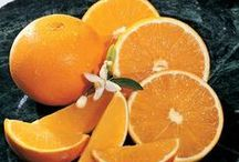 Fresh From the Grove Oranges! / Fresh from the grove Florida oranges are richly luscious, wholesome and loaded with Vitamin C. Taste the sweet, juicy flavors of Hale's freshly-picked orange varieties!