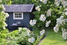 Nest // My Future Garden