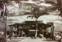 TBT Archives / Throwback Thursday historic photos from Hale Groves' location in Vero Beach, Florida!