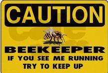 Beekeeping (Homesteading)