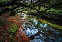 Parco Nazionale d'Abruzzo, Lazio e Molise / #natura #parchi #nazionali #abruzzo #viaggi #escursioni