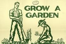 Home Grown Is Best! / by Lindsay Long