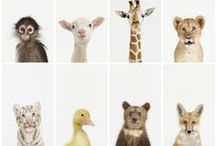 MOODKIDS ♥ Animals / by MoodKids