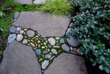 jardin - garden / Backyard