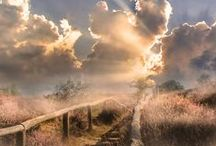 Skyscapes / by Heather Marie
